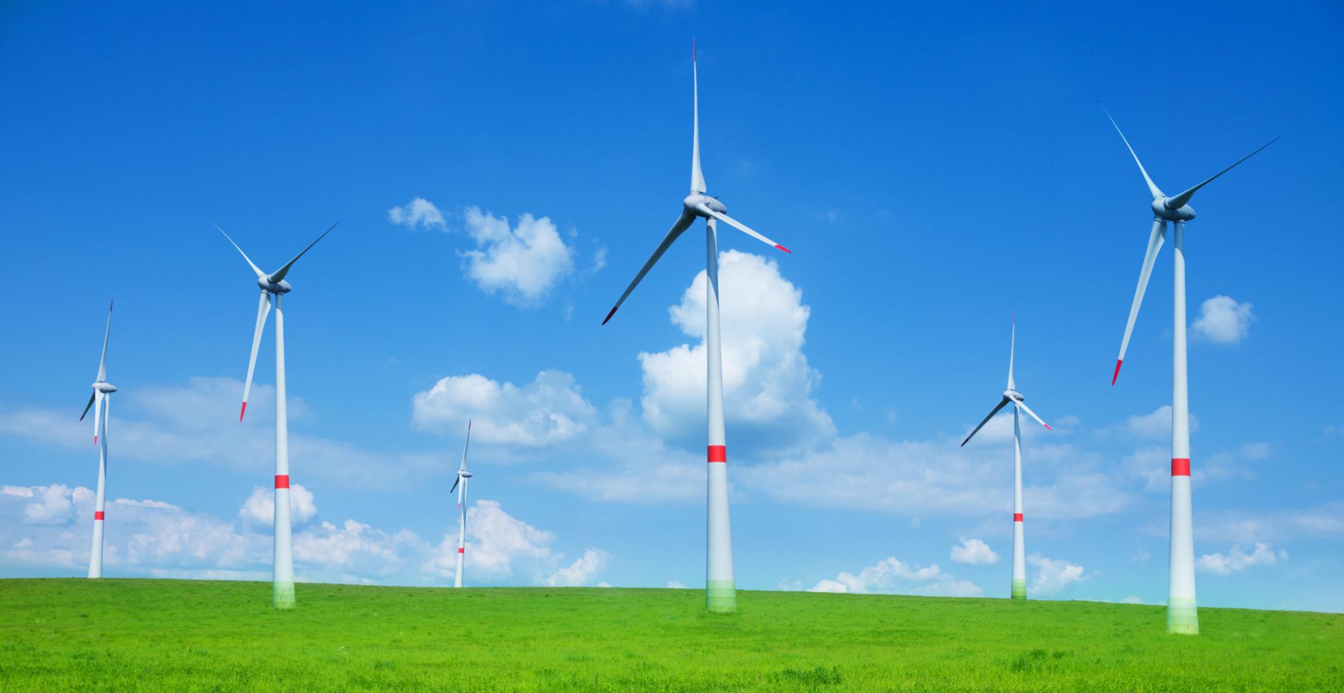 新電力 風力発電所